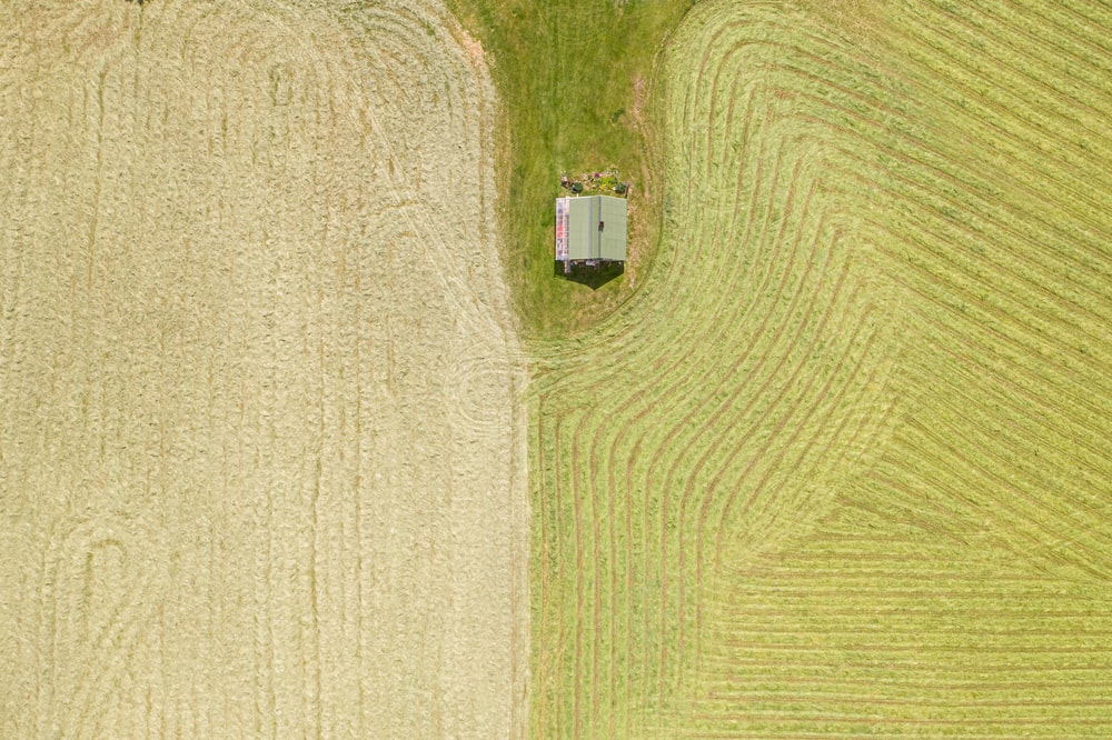 aerial photography of house surrounded with field