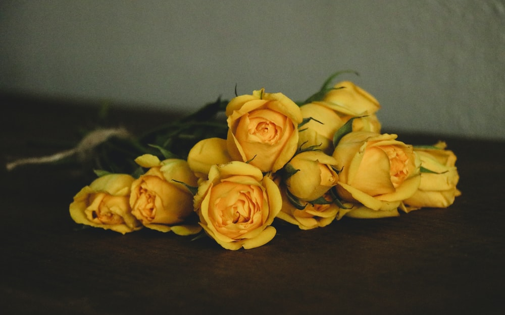 yellow rose flowesr