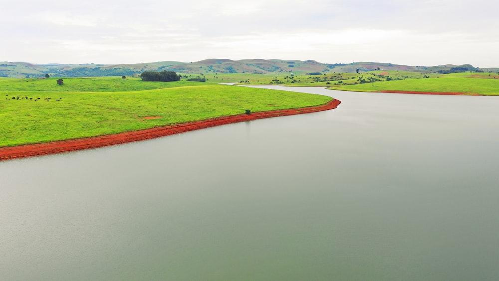 green field beside body of water