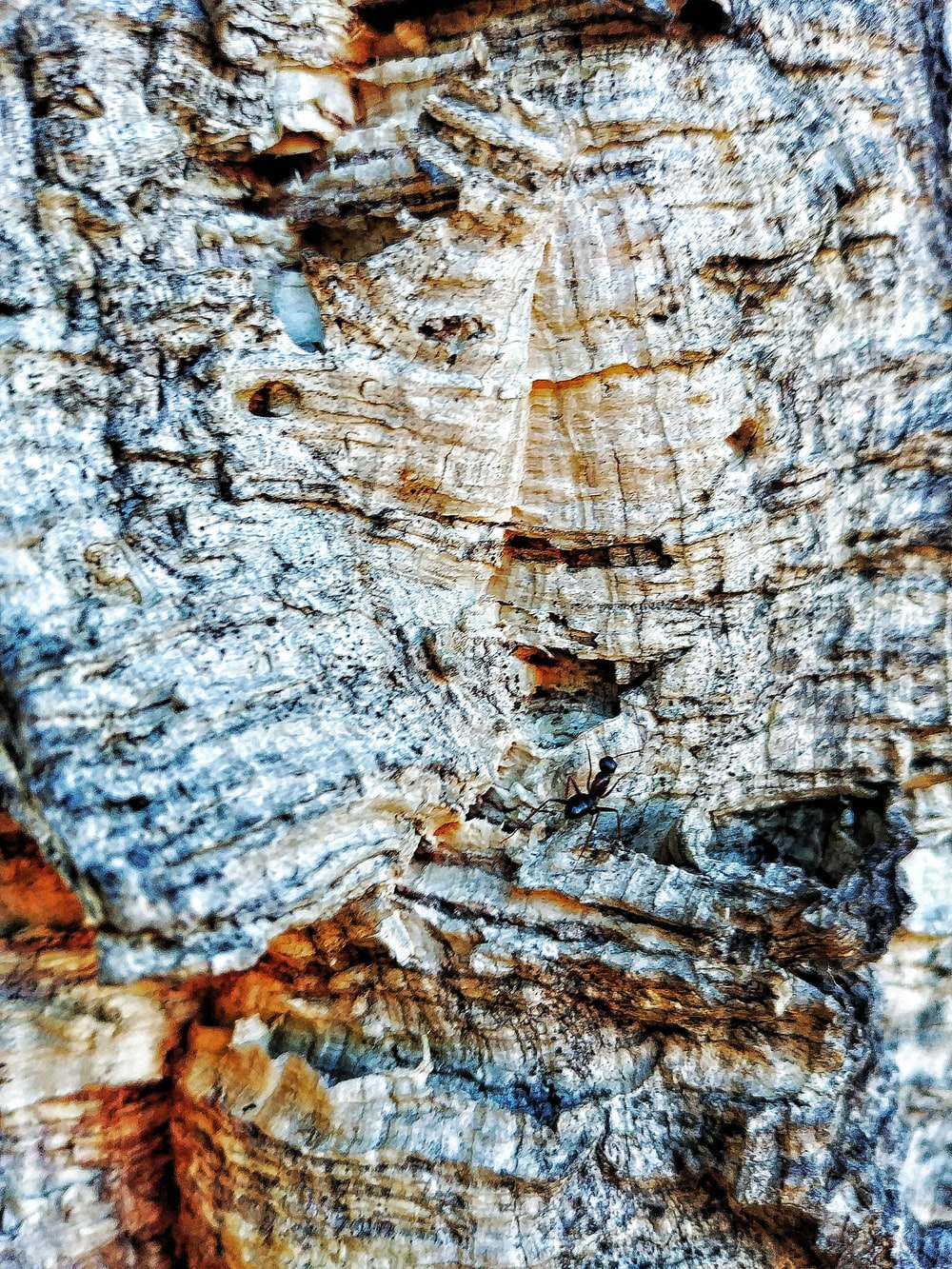 brown and gray rock