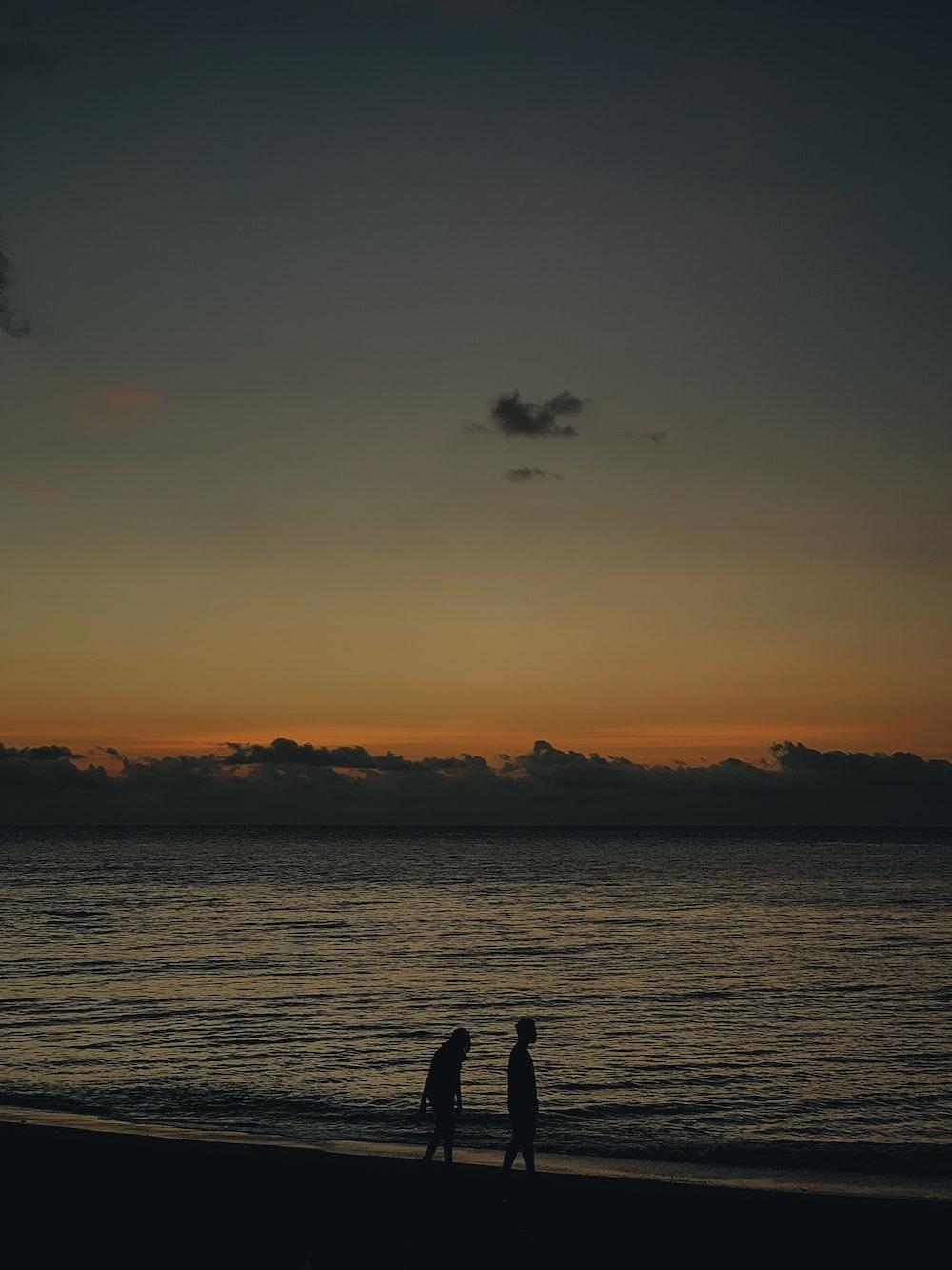 two person walking on seashore