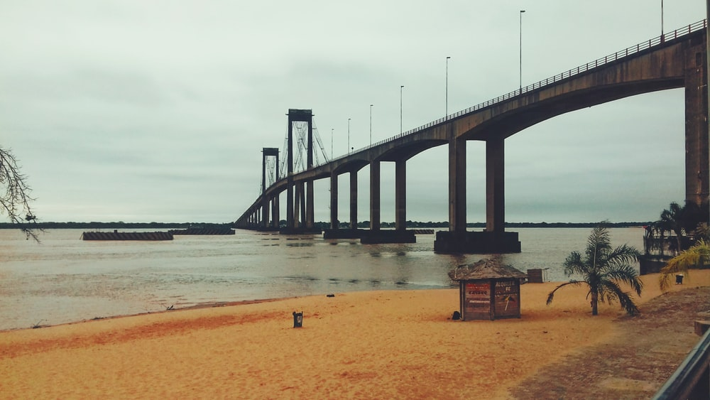 gray concrete bridge scenery
