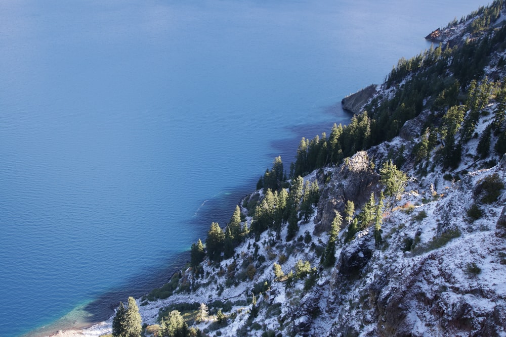 green pine trees in white snow covered hill slope in beach