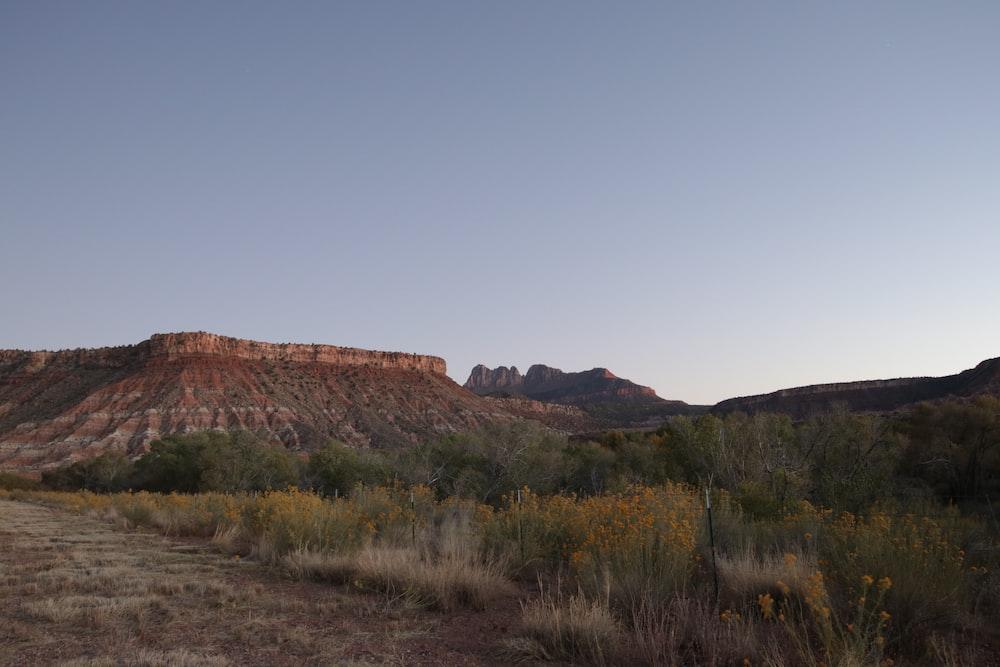brown plateau in mesa