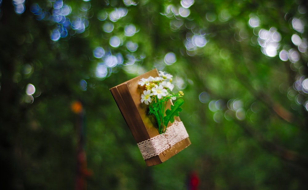 brown book with wrapped flowers in mid air