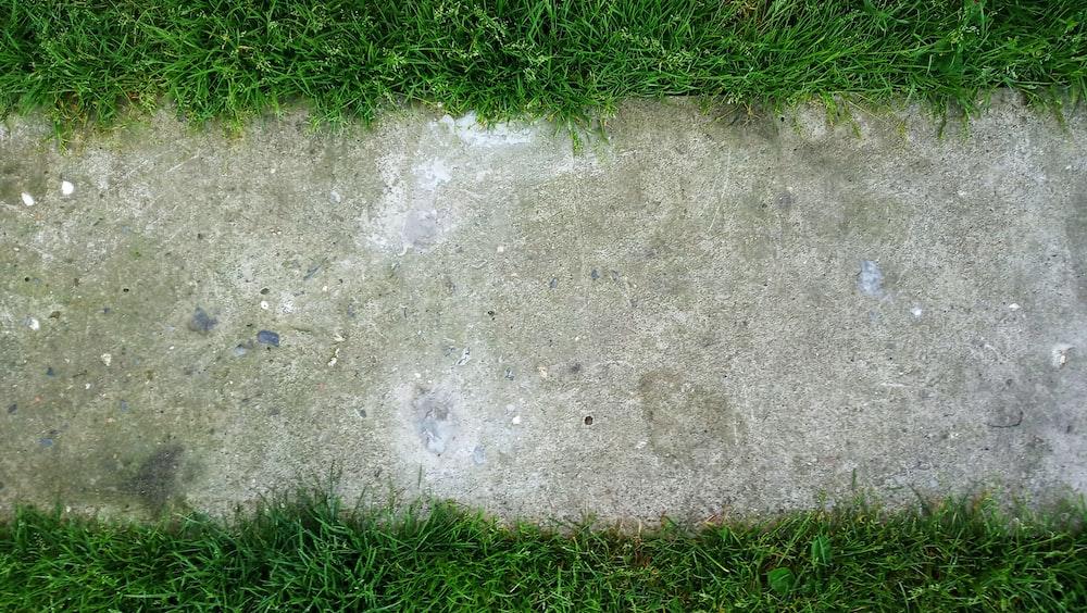 concrete pathway beside grass