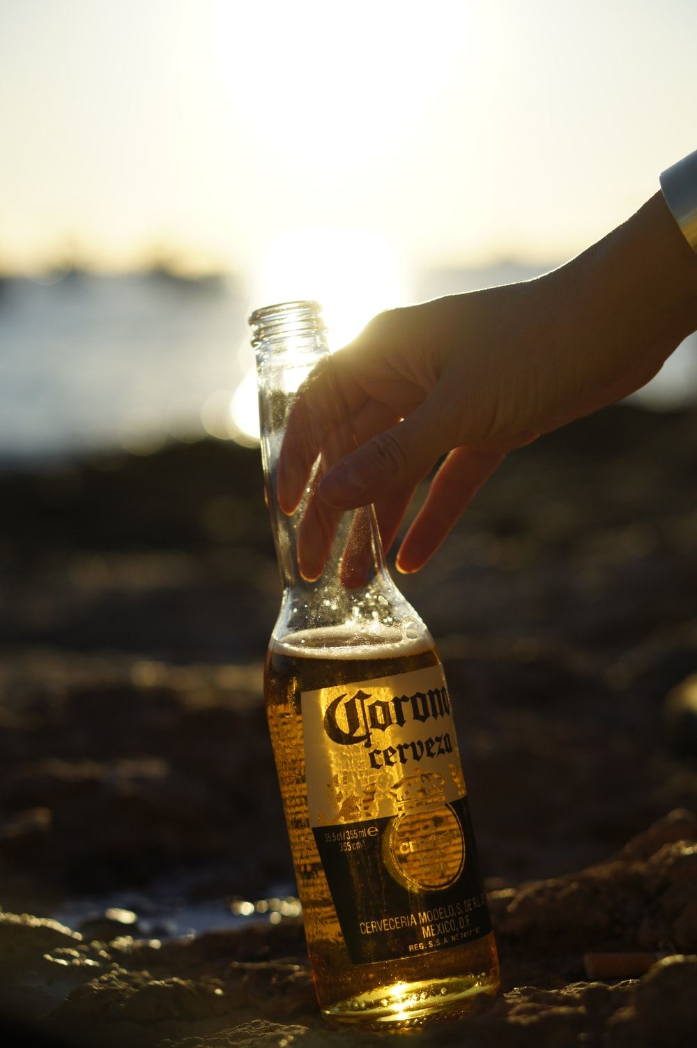 person holding Corona beer bottle