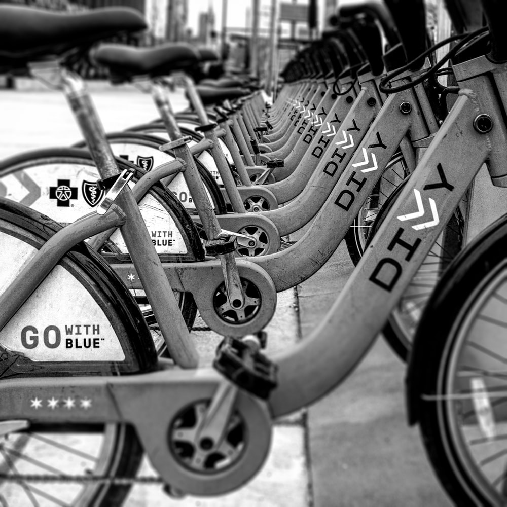 gray-white-and-black Divy bicycles