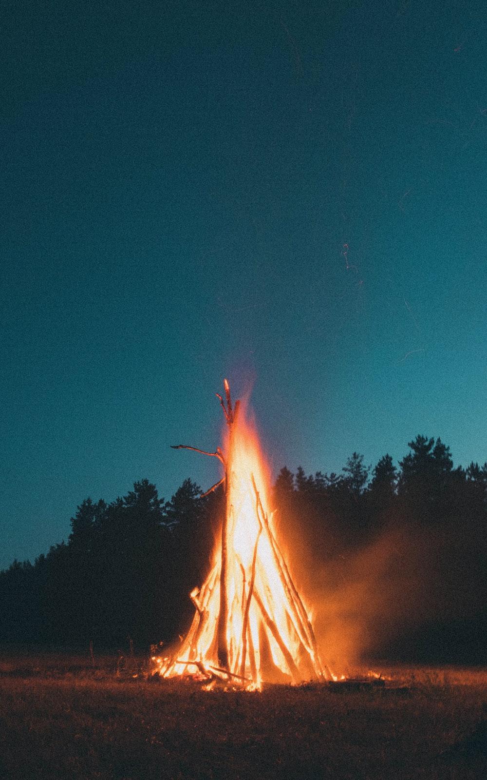 bonfire under blue sky during nighttime