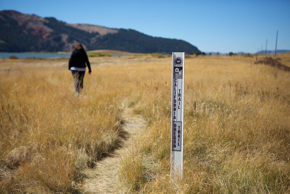 woman walking on walkway beside rice field