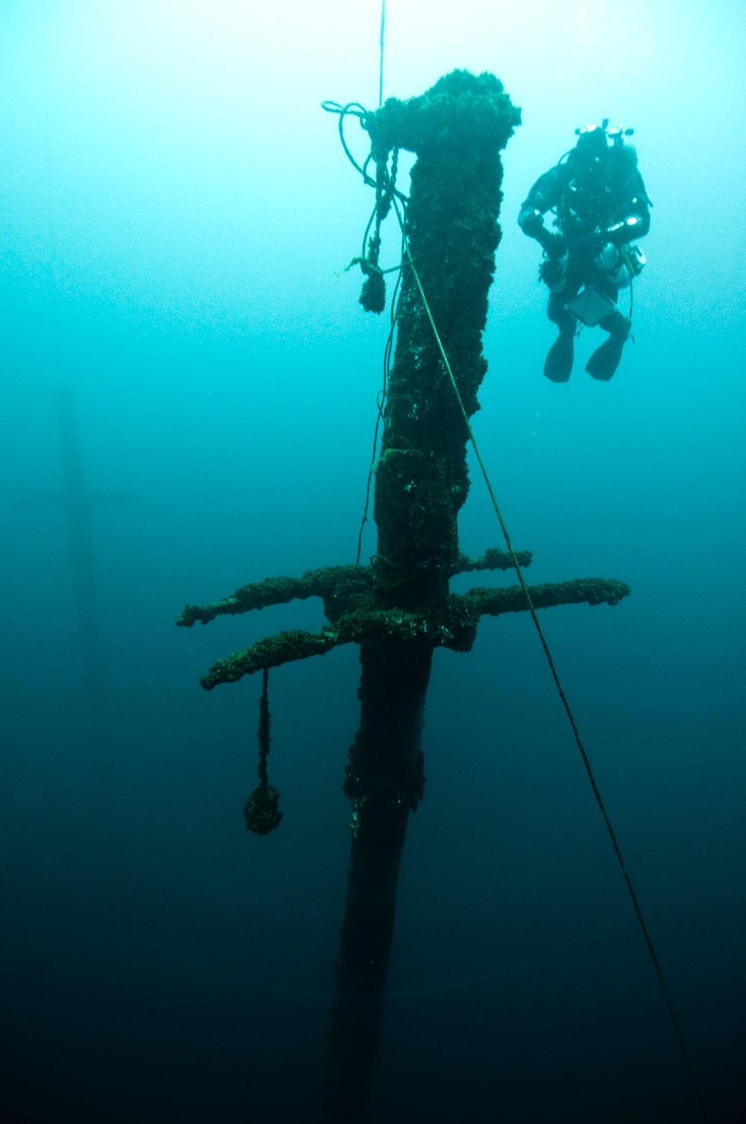 A mast of the schooner DEFIANCE.