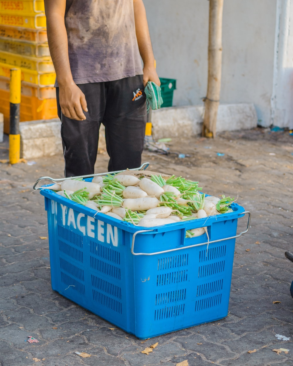 white radish in a blue plastic container