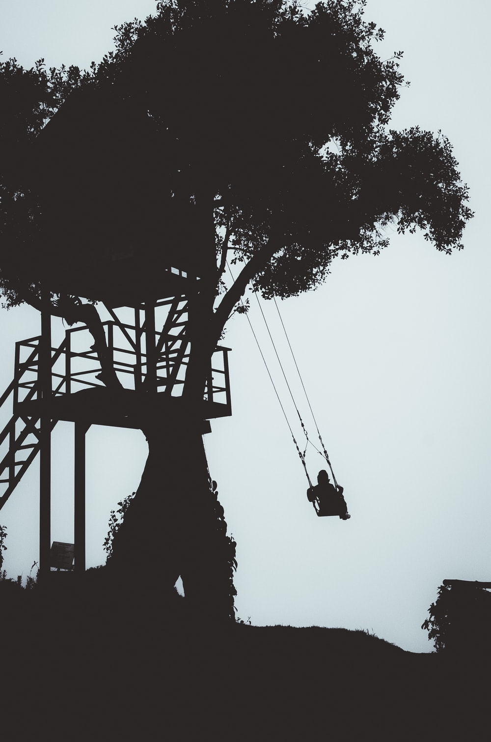 silhouette photography of person swinging under the tree