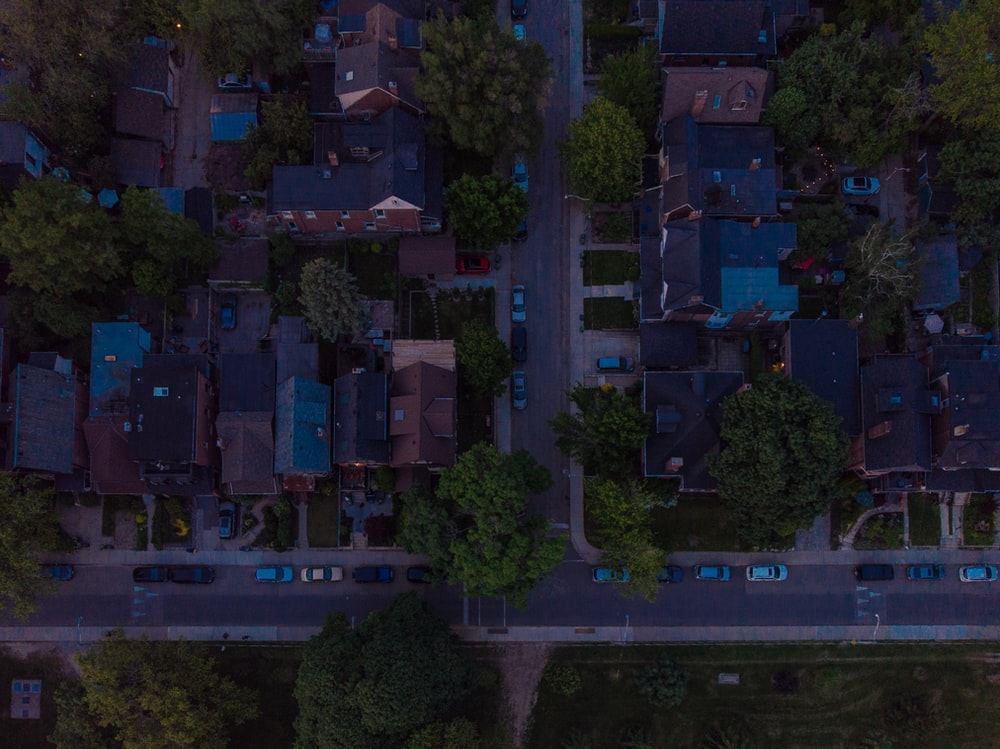 aerial photography of brown houses surrounded with tall and green trees