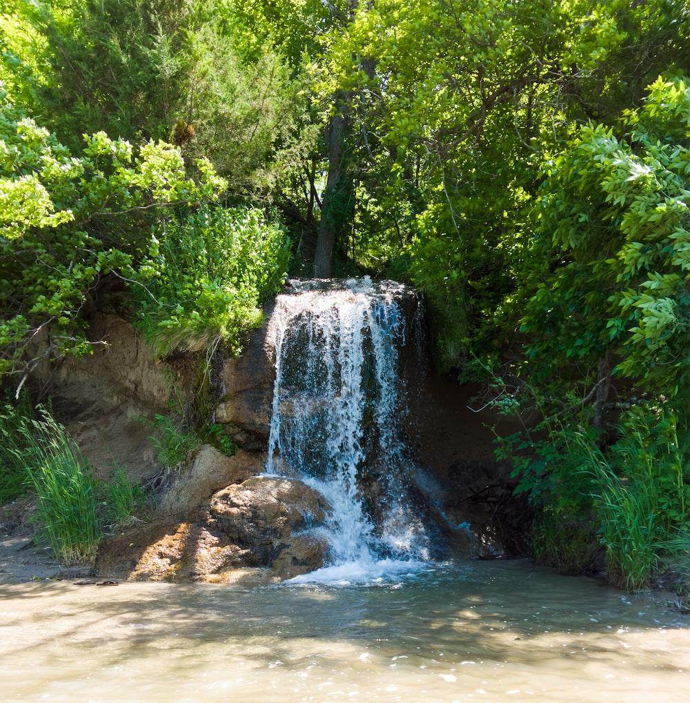 waterfall between plants