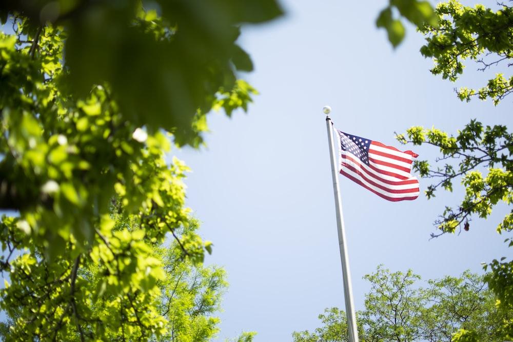 USA flag on pole near trees