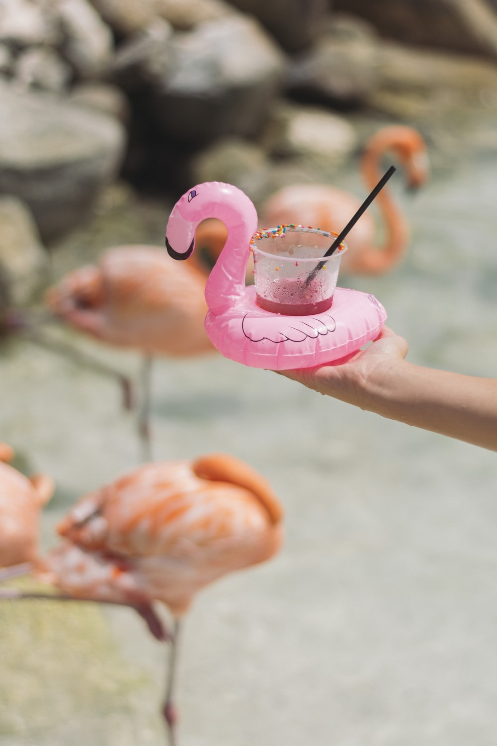 person holding pink flamingo cup holder