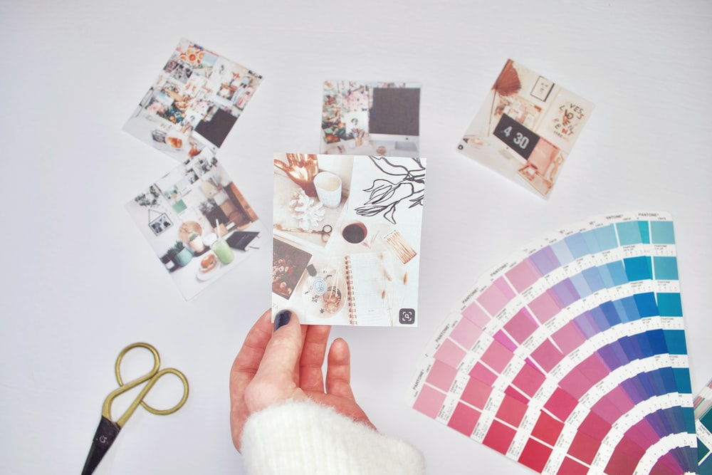 flat lay photography of photos