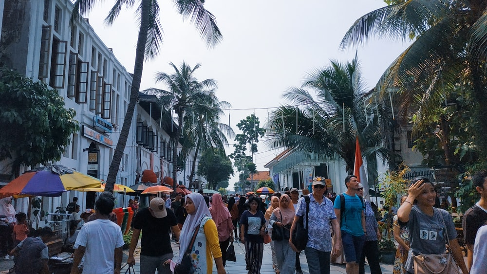 people walking near coconut trees and buildings