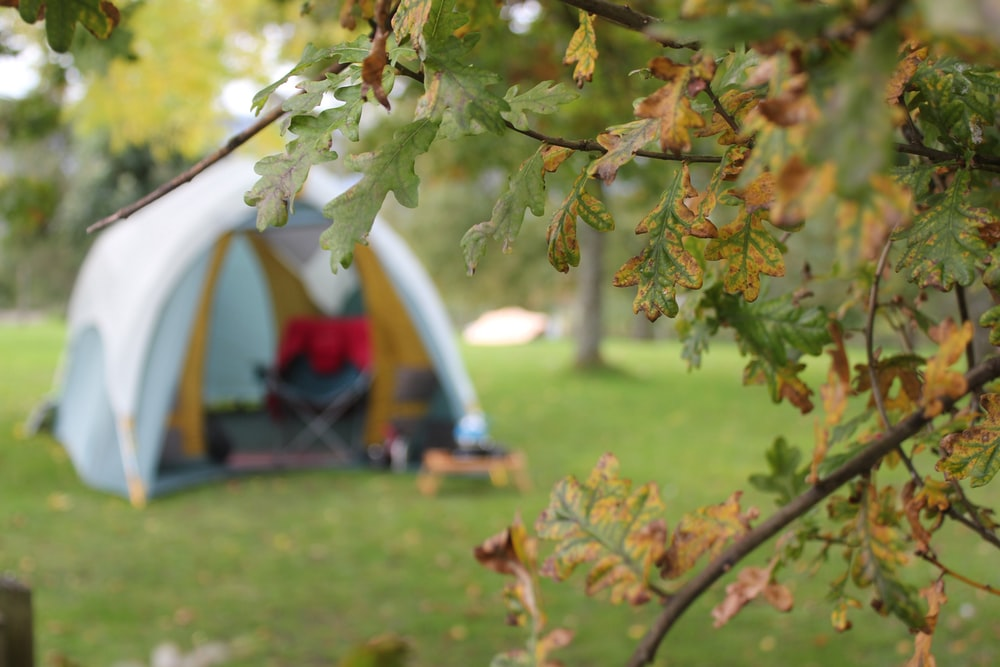 open dome tent at the park