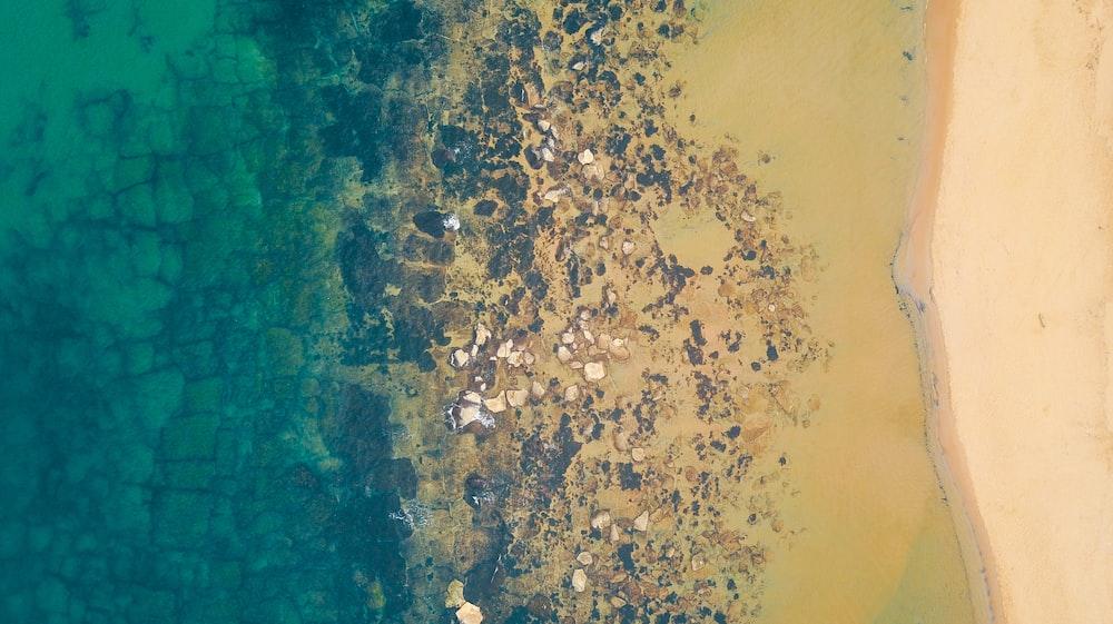 aerial photo of brown sand rocky beach