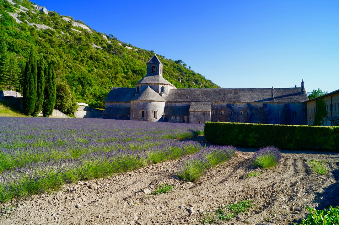 French Chataux set in beautiful Lavender fields in Provence
