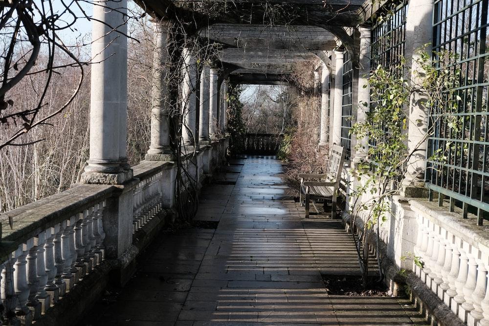 plants near tunnel