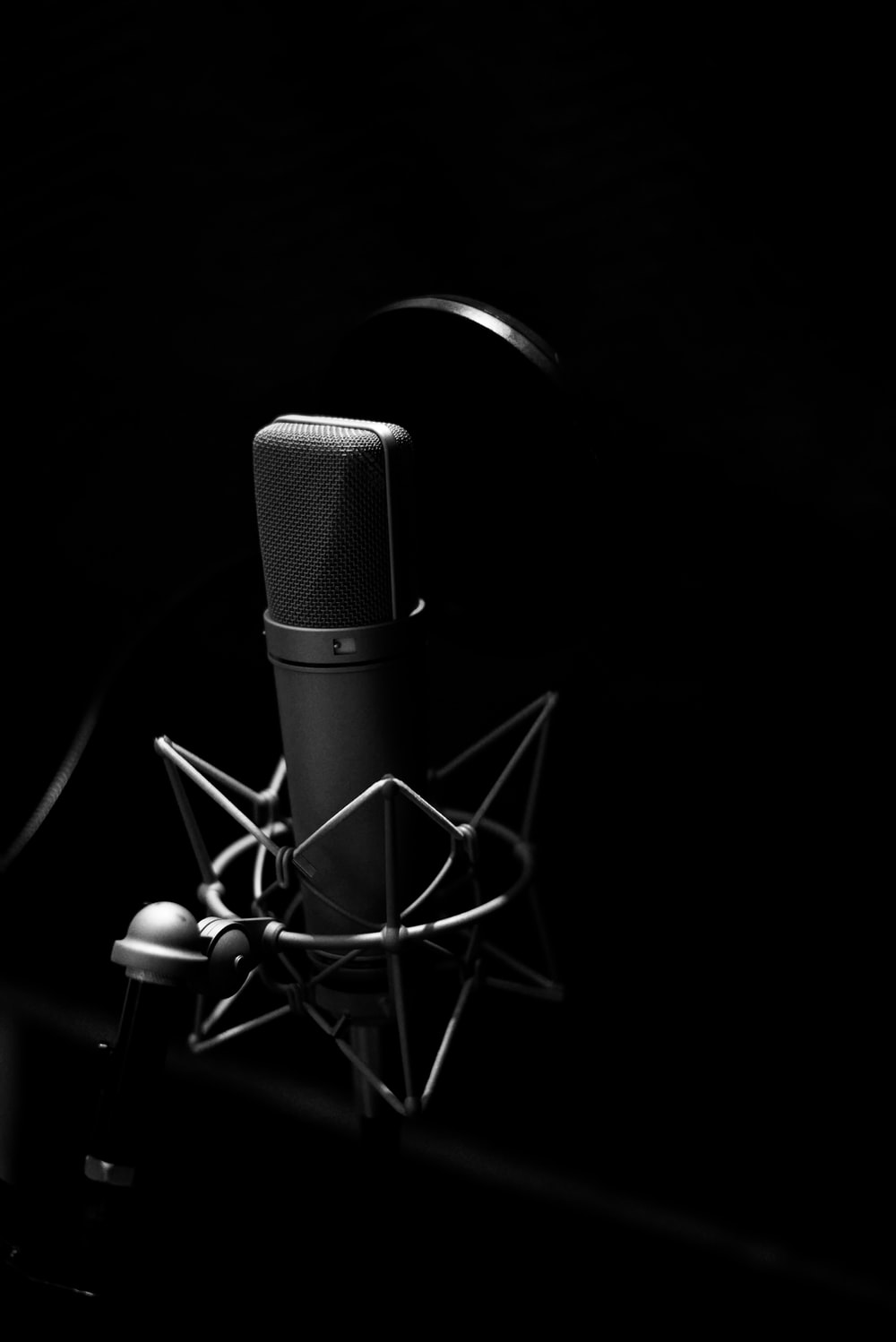gray condenser microphone and pop filter