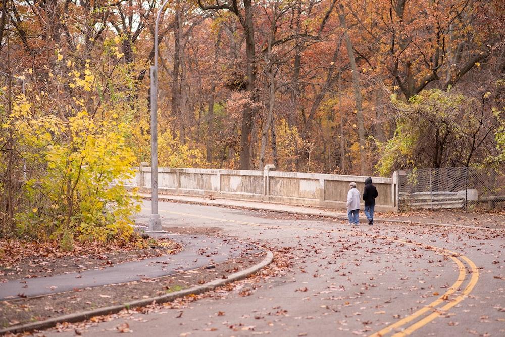 two women walking near trees