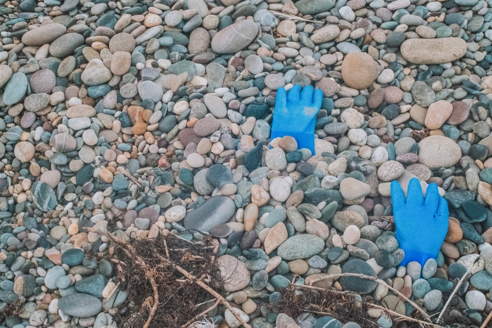 two blue gloves close-up photography