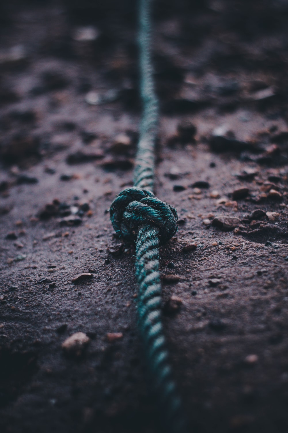 teal rope on soil