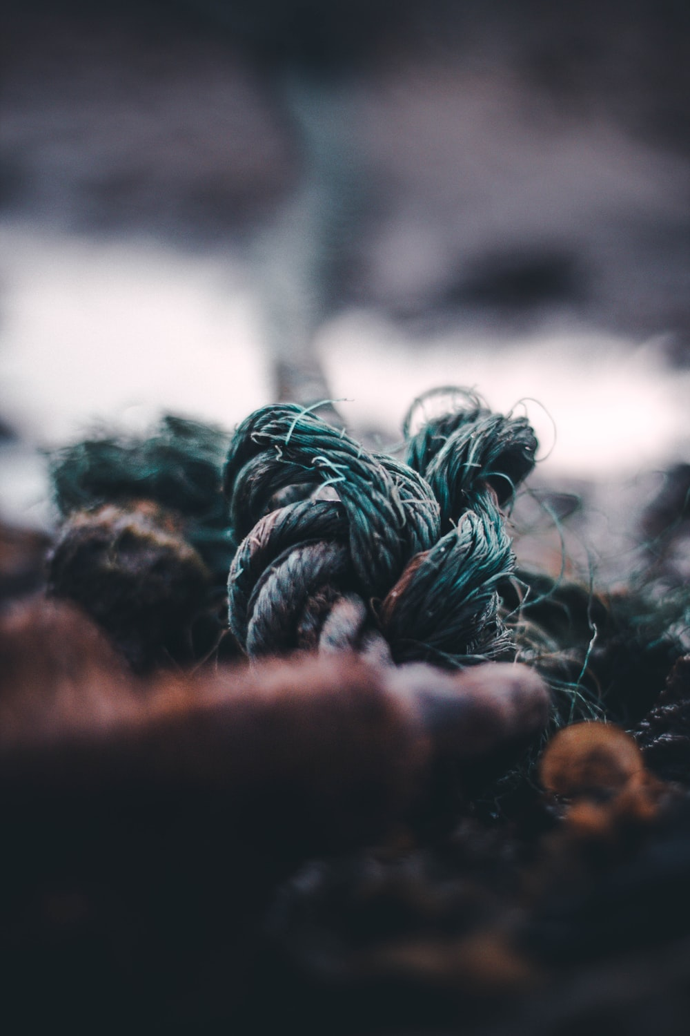 selective focus photography of green jute rope