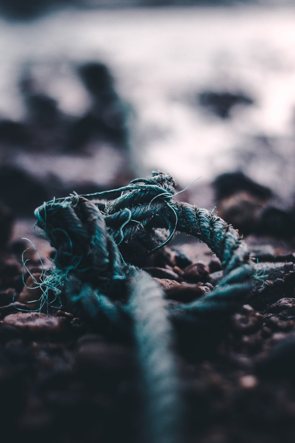 selective focus photography of blue rope