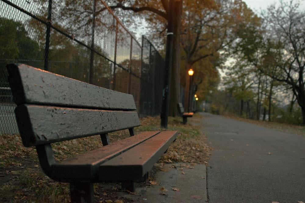empty wooden park bench