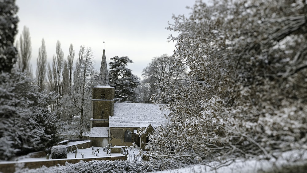snow covered house and trees