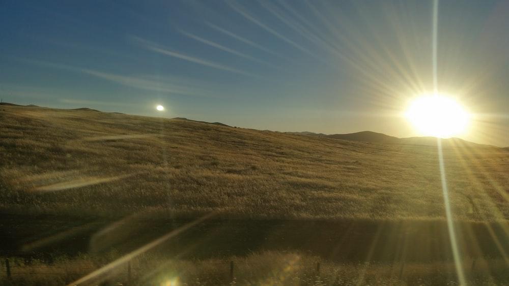 green grass field and sun