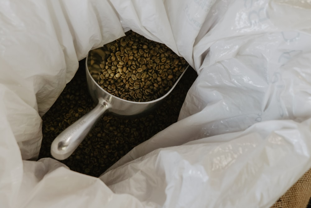 coffee beans in stainless steel scoop
