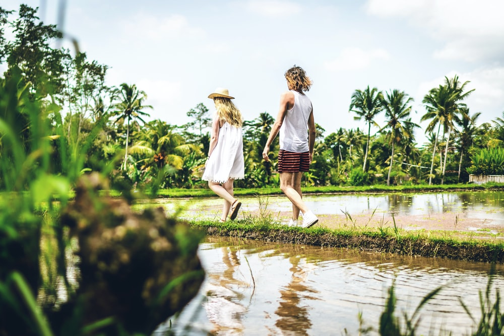 man and woman walking in rice field