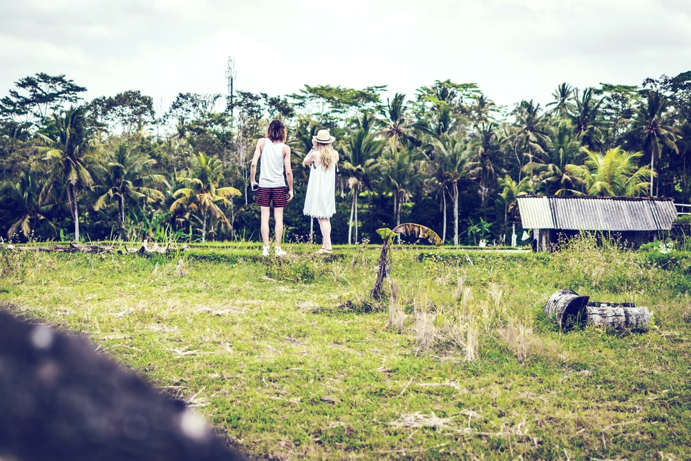 man an woman looking at coconut trees