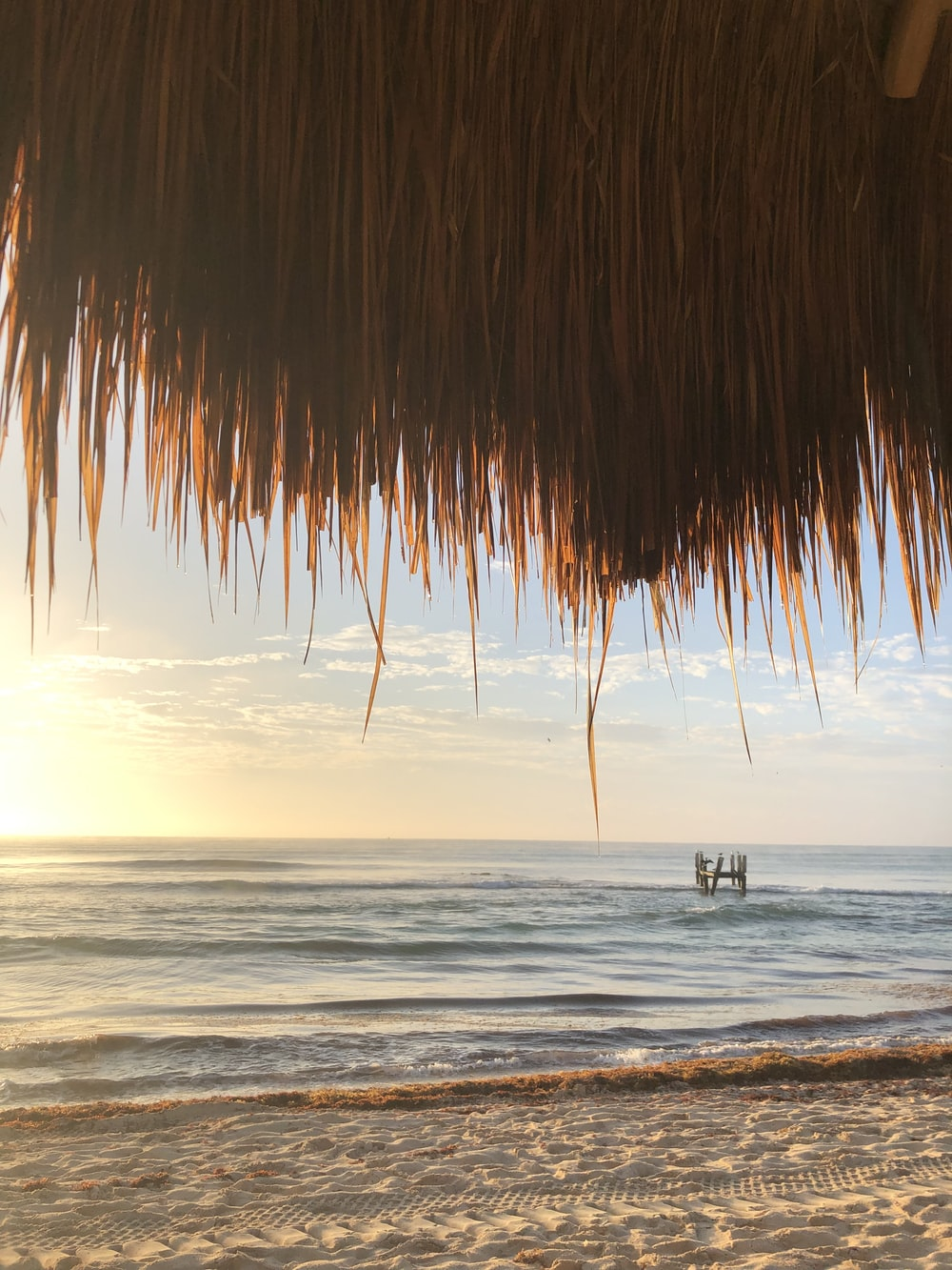 landscape of a sandy beach