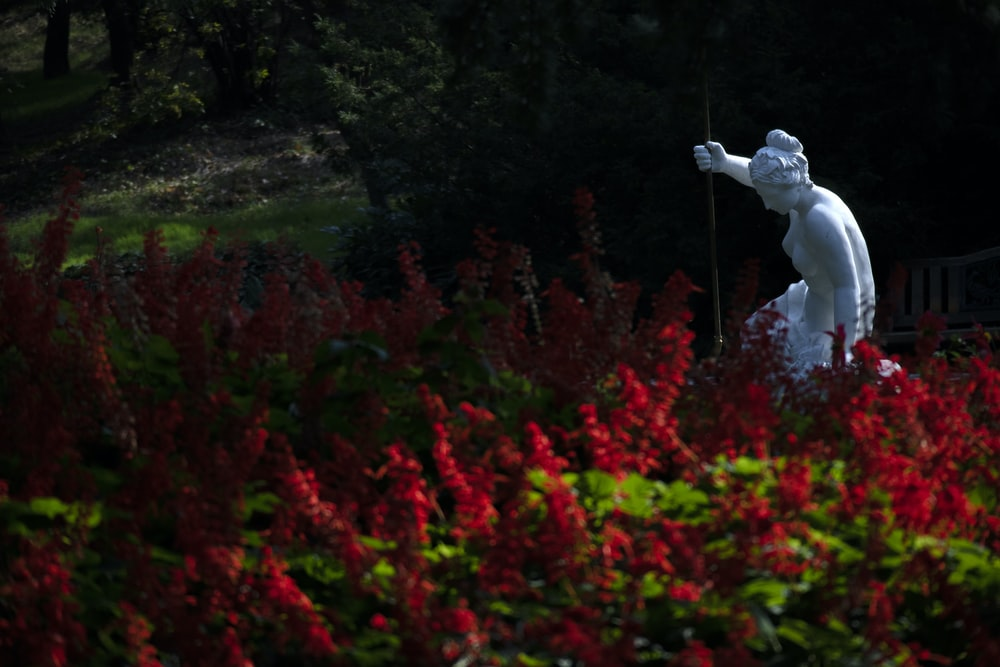 nude woman statue in garden with red blooming flowers
