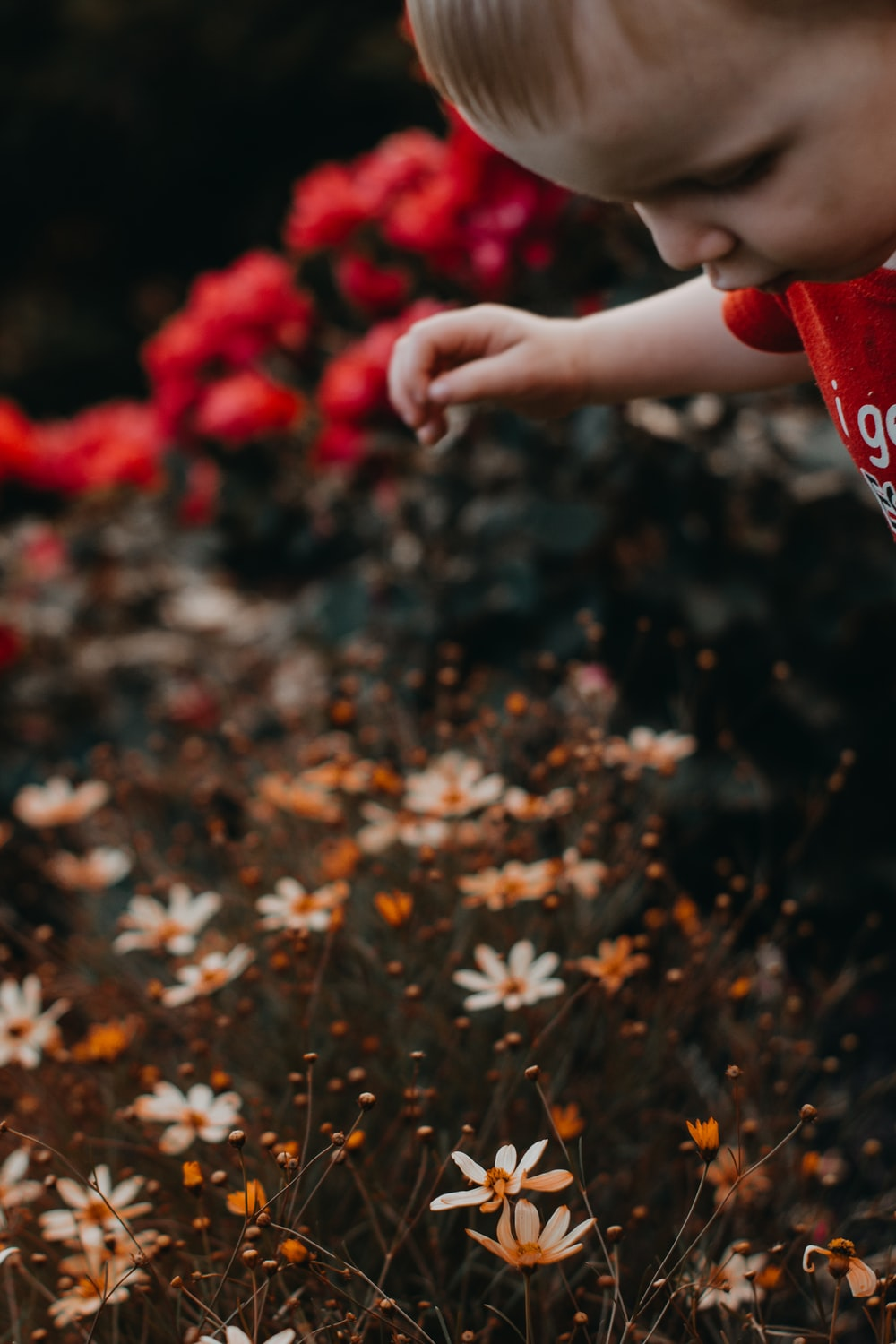 boy's red and white t-shirt