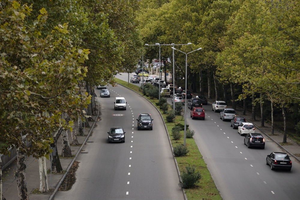 cars passing on road surrounded with trees