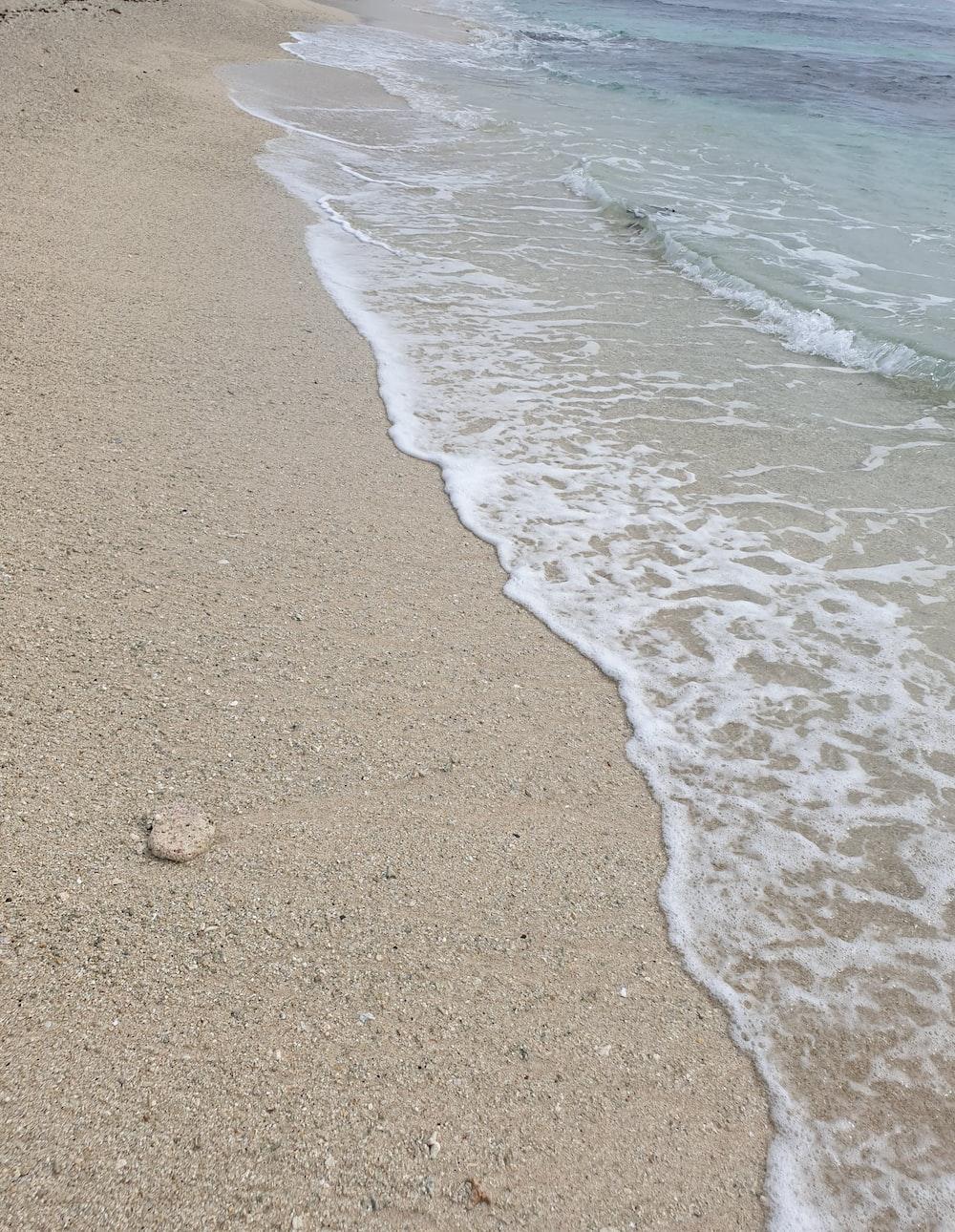 close view of seashore at daytime