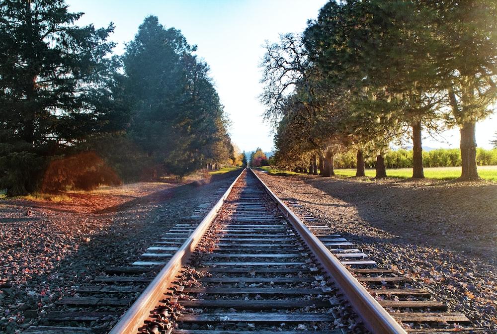 brown metal railroad