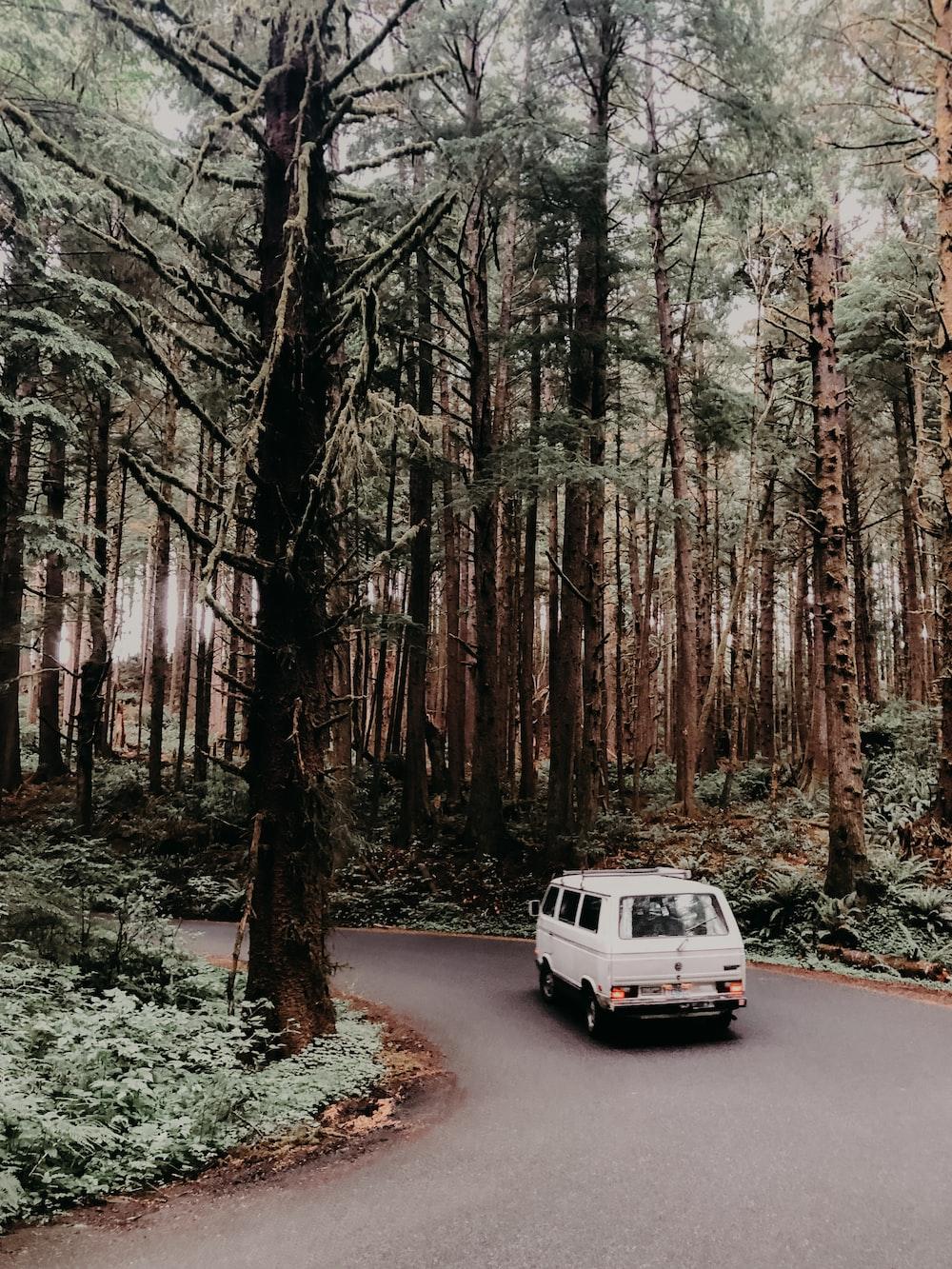 white van traveling on road