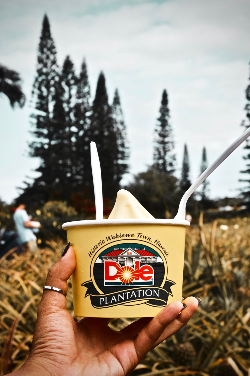 person holding Dole Plantation ice cream cup
