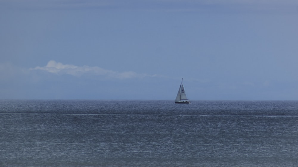 white and black sailboat out at sea