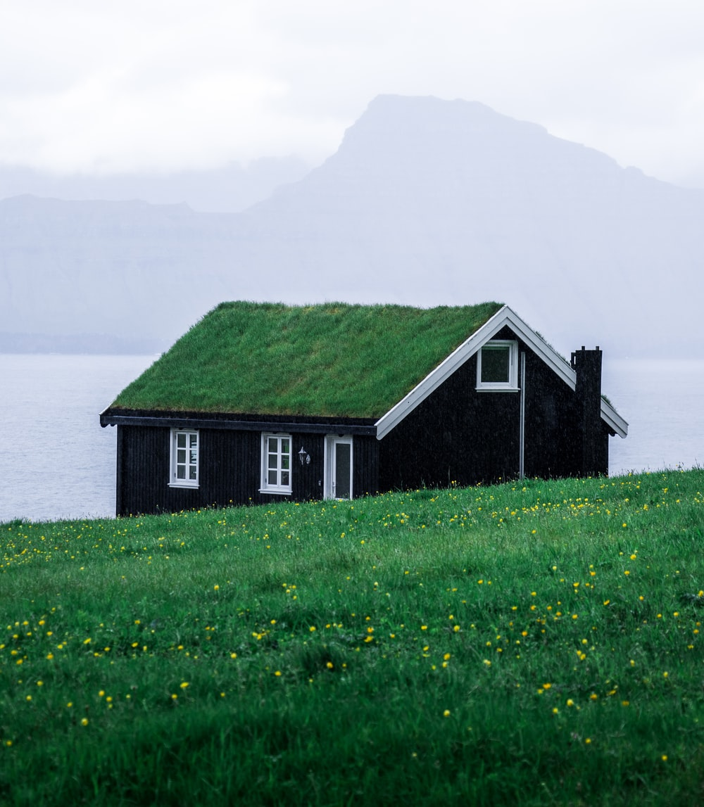 house beside body of water and grass field