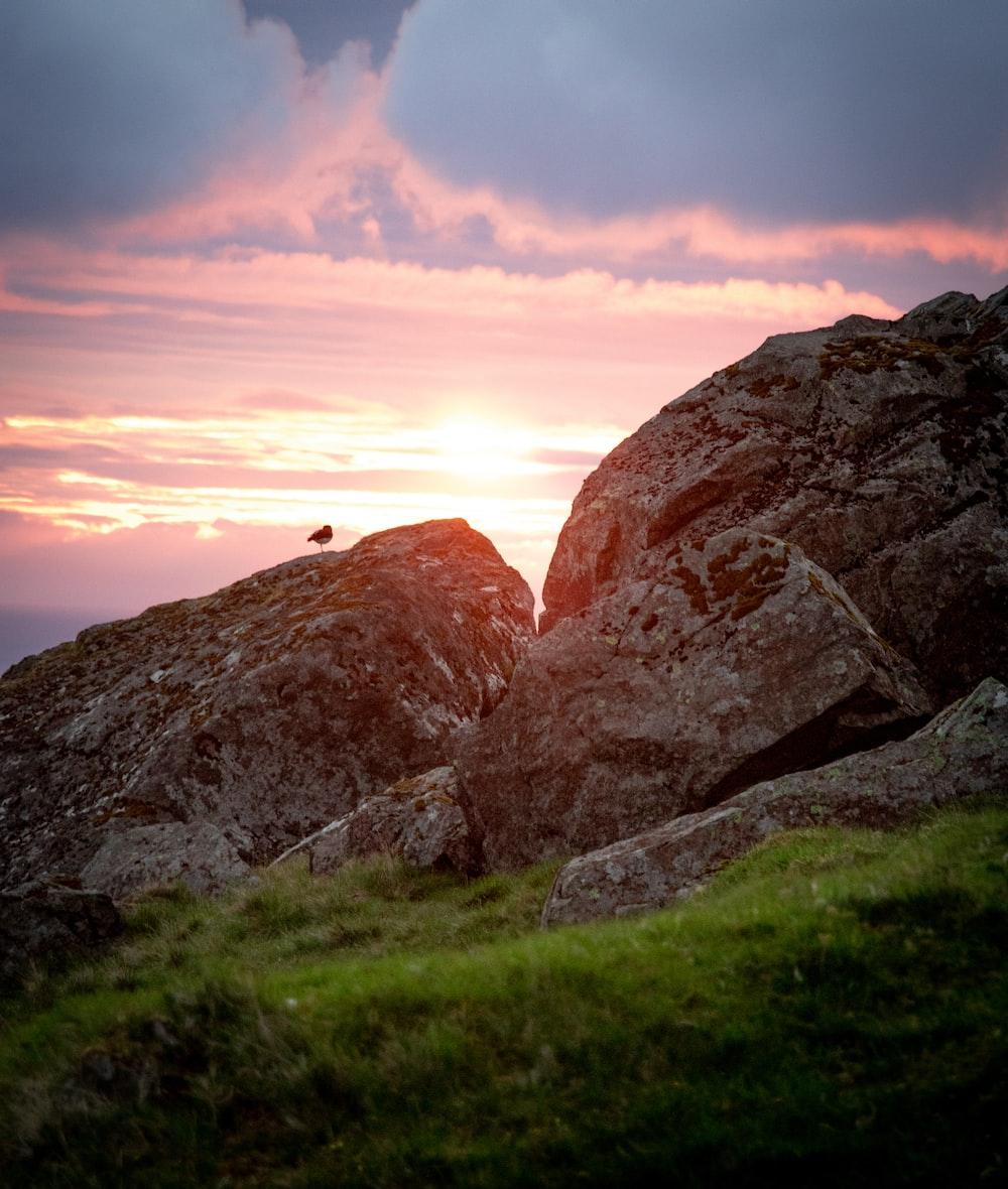 rocks at daytime
